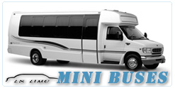 Mini Bus rental in Orange County, CA